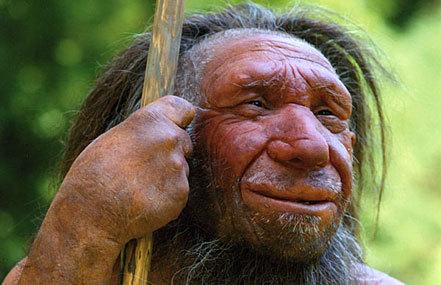 Bild: Petition für Erhalt der Landeszuschüsse für Archäologie