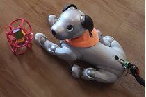 Please make the new Sony aibo availble in Germany/Europe again!