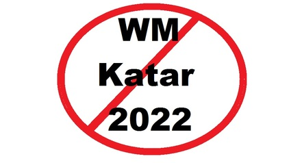 Pro Contra Gegen Die Austragung Der Fussball Wm 2022 In