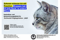 Castrate, marking and register for all cats who will going out of the house in Dortmund