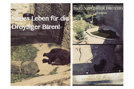 Bild zur Petition mit dem Thema: Animal Lovers - New life for the two bears Aiko & Toni