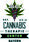 Logo of organisation DCI-Cannabis-Institut / Cannabis-Verband