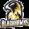 Logo of organization Münster Blackhawks e.V.